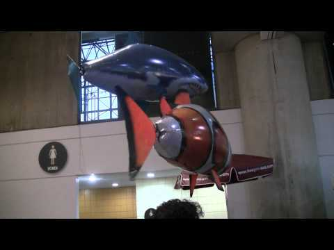 Air Swimmers Remote Controlled Flying Shark And Clown Fish