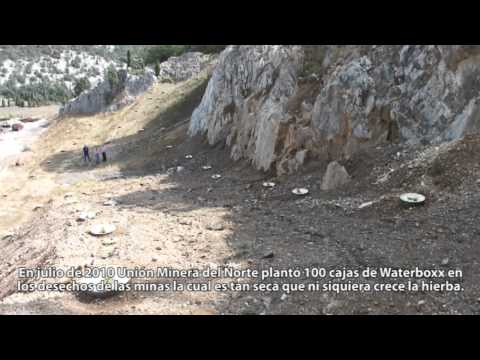 Reforestación de depósitos de minas a Union Minera del Norte España con la Technologia Groasis