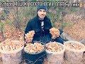 Сбор грибов 11. 11. 2017. Опята на пнях. СОБРАЛ МЕШОК ТОЛСТОНОГИХ ОПЯТ!!!