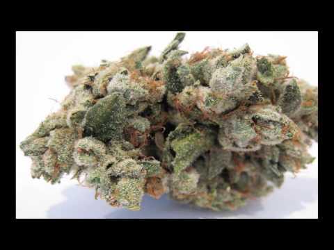 Best OG Kush Medical Marijuana Pictures #1 HD!