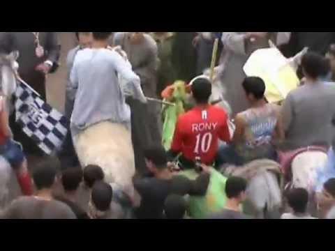 بالفيديو : ماراثون الحمير الأول فى مصر بمحافظة أسيوط