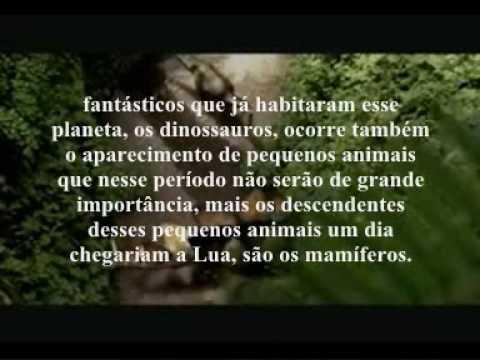 Paleontologia - Repteis