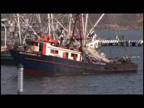 Pesca ilegal de dorado 1-2