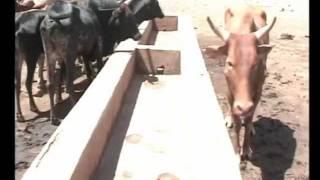 Water to the Maasai