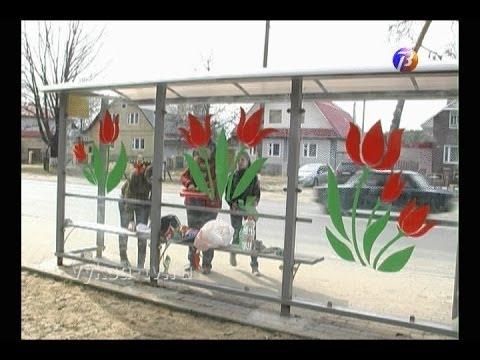 Волонтеры разукрасили автобусные остановки