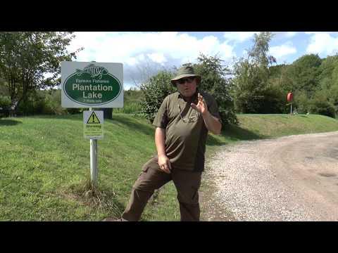 Carpheadbangers & Rooster at Elphicks Fisheries / The Plantation Lake