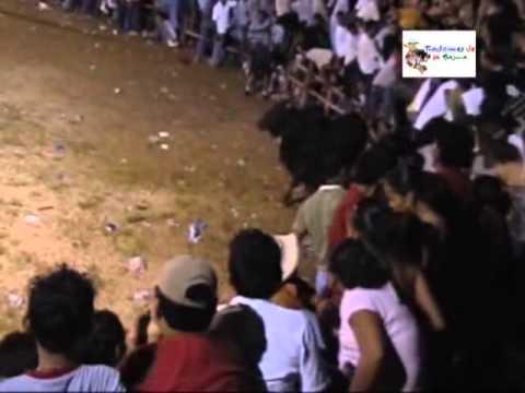 Programa 204 Danza Colpachí Toros Santiago 2007 Hda Sta Rita