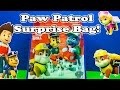 PAW PATROL Nickelodeon Paw Patrol Surprise Bag a Paw Patrol Video Parody