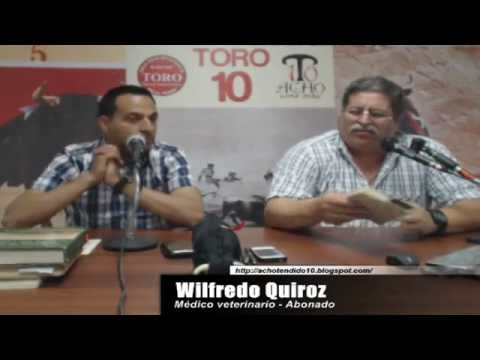 TORO TENDIDO 10 (10.12.14)