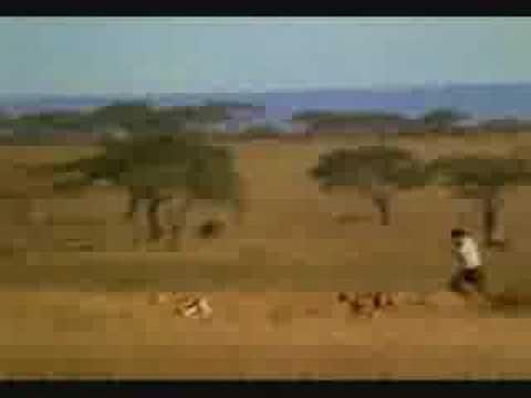 Cheetah VS Manusia.. Menurut kalian, siapa yang menang?