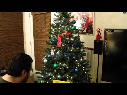 DSP-s Christmas Tree Lighting -11 pt5