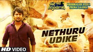 Netthuru Udike Full Video Song || Krishnagadi Veera Prema Gaadha