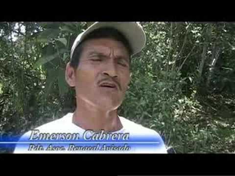 SOS en el Alto Mayo Tingana Llora