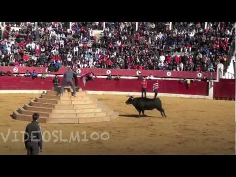CALAHORRA vacas en plaza, mañana sabado 2 marzo 2013