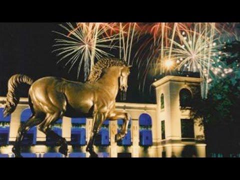 DSC History: Leonardo's Horse