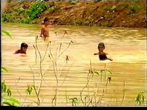 Waterman - Rajendra Singh