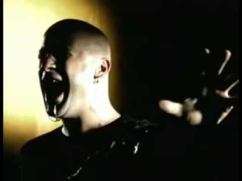 Disturbed Stricken Music Video