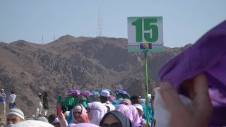 Hadž 2018: Prve grupe u obilasku znamenitostima Medine