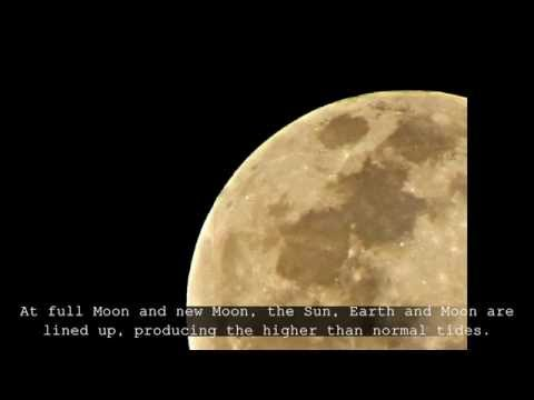 The Biggest Moon (Super Moon 2010)