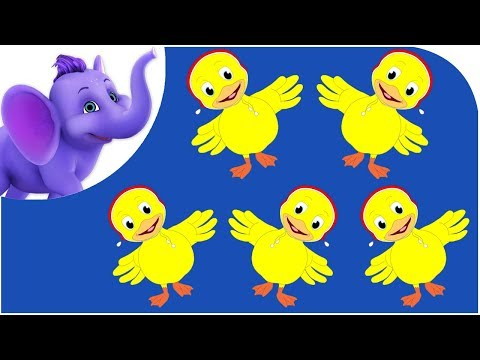 Five Little Ducks - Nursery Rhyme -wvQJiqpLAsg