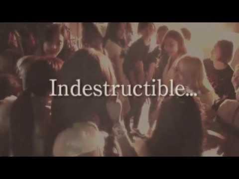 Indestructible (Video Lirik)