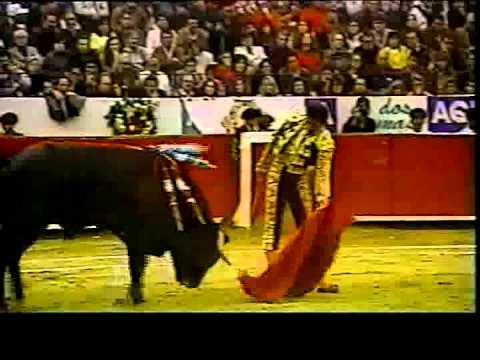 Nuestro toro de lidia 6