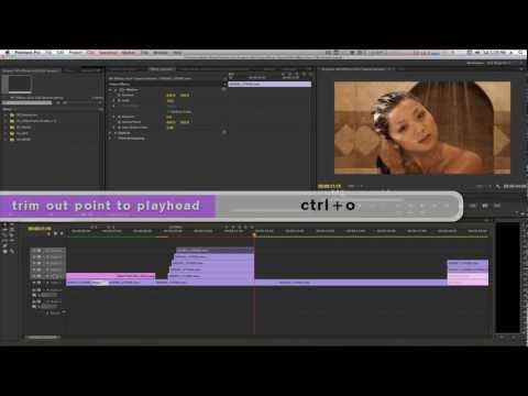 Music Video Effects Vol. 4 Part 1 Premiere Pro CS6 by NLE_Ninja