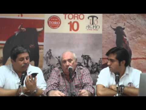 Toro Tendido 10 (14.04.13)