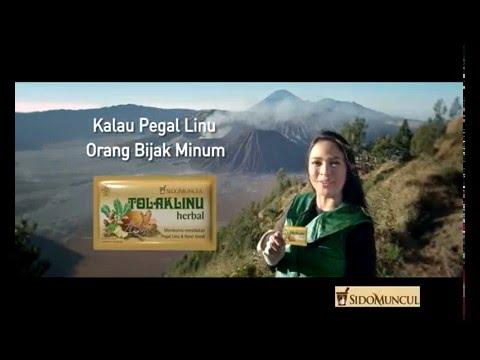 Tolak Linu Herbal 'Gunung Bromo' Komersial