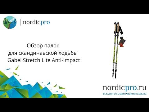 Gabel Stretch Lite AI / Палки для скандинавской ходьбы