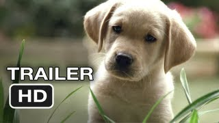 Quill The Life of a Guide Dog Official Trailer (2012) HD Movie
