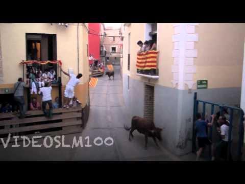MALON vacas-novillos en calle 15 septiembre 2012