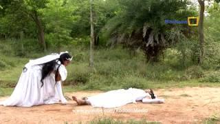 Sivasankari 28-02-2015 Suntv Serial | Watch Sun Tv Sivasankari Serial February 28, 2015