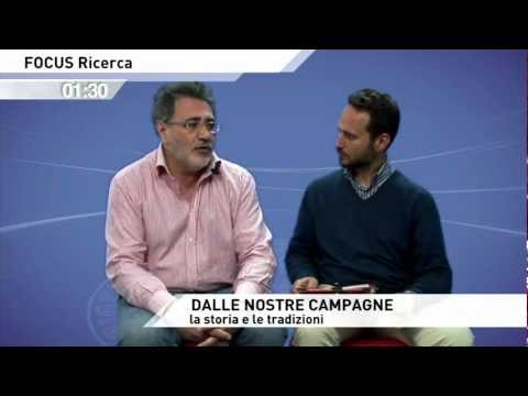 FOCUS Ricerca - Prof. Giuseppe D'Angelo