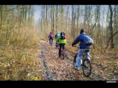 VIDEOCLIP Traseu MTB Padurea Boldu-Cretuleasa - Padurea Andronache