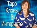 Таро клоны в сетях