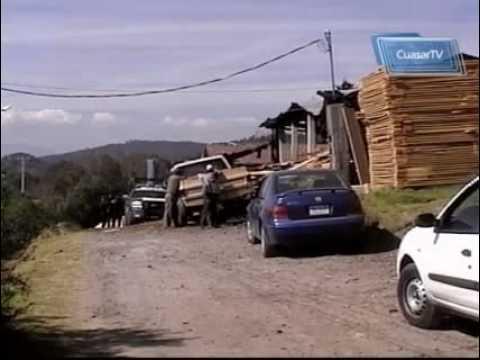 Operativo Federal contra talamontes en Zona Monarca