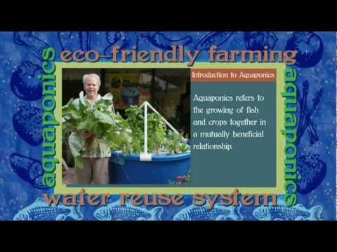 Eduponics Aquaponics for Education Mini Clip