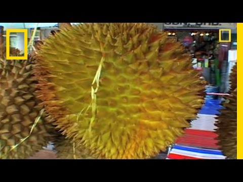 Extreme Eats: Funky Fruit