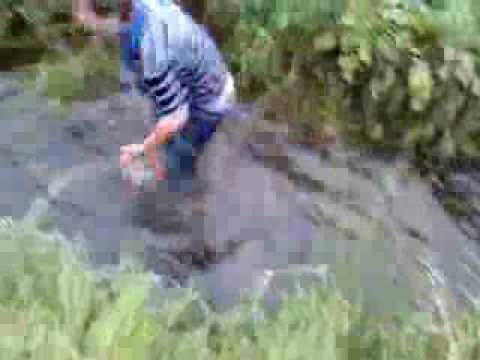 fat kid fails river jump