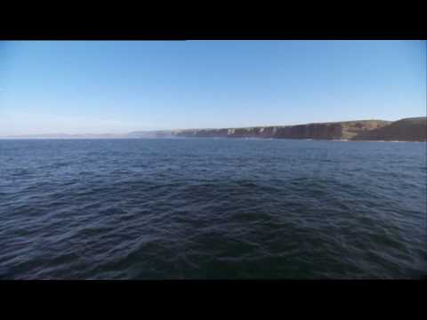 Jakatta - American Dream ( Original Mix ) HD