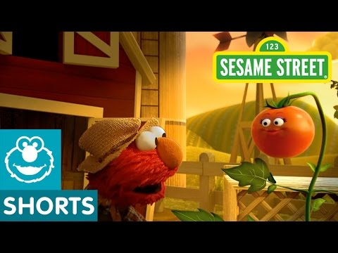 Sesame Street: Elmo The Musical Tomato (Preview)