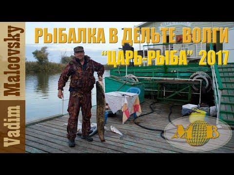 ловля рыбы в дельте волги