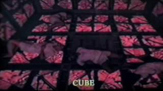 Cube vhs Trailer