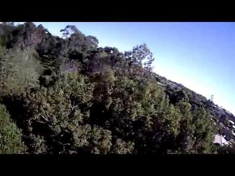 Tree Surfing // Blackout Mini H Quad // MT1306-10 // CC3D // FPV - default