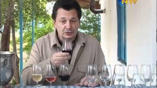 Vedat Milor Likya Şarapları Ziyareti