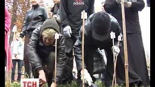 В Житомире высадили сотни крокусов
