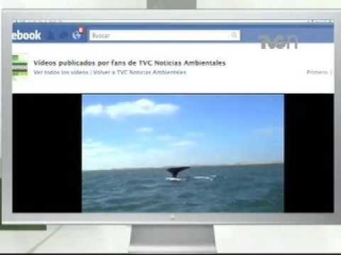 TVCN Ambientales te invita a conocer SeaWorld