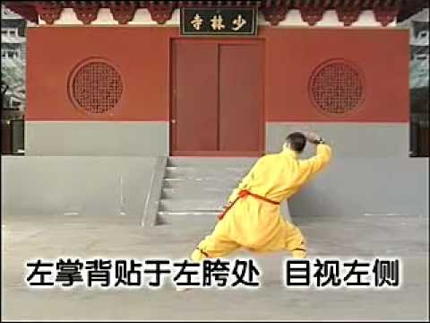 Shaolin Big Flood (Da Hong) Kung fu