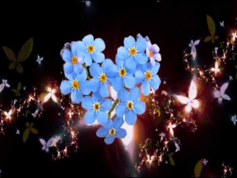 Adagio - Lara Fabian (letra traducida)